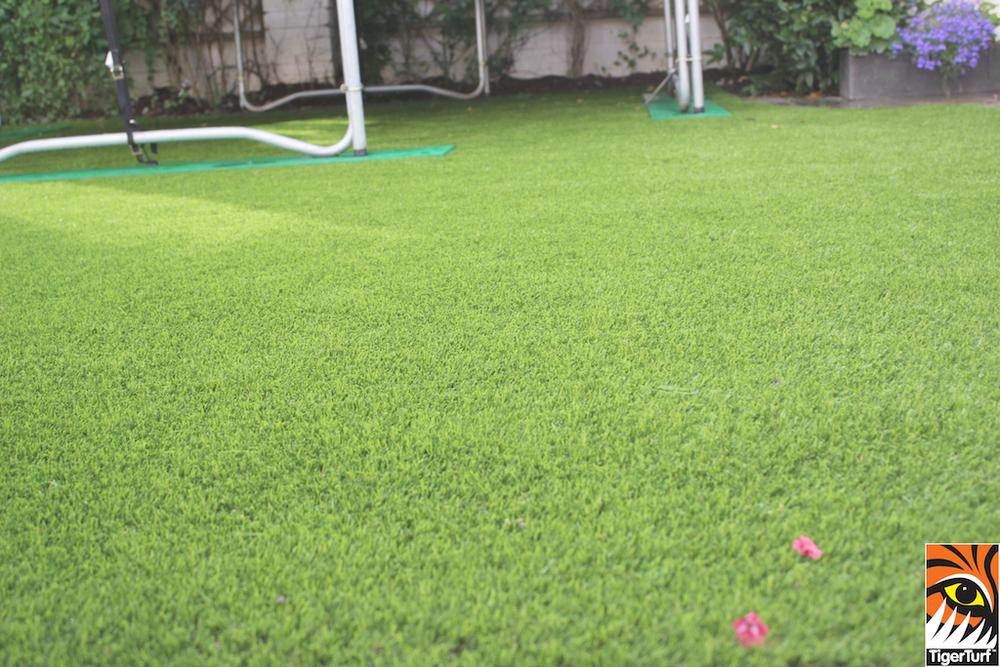TigerTurf finesse lawn