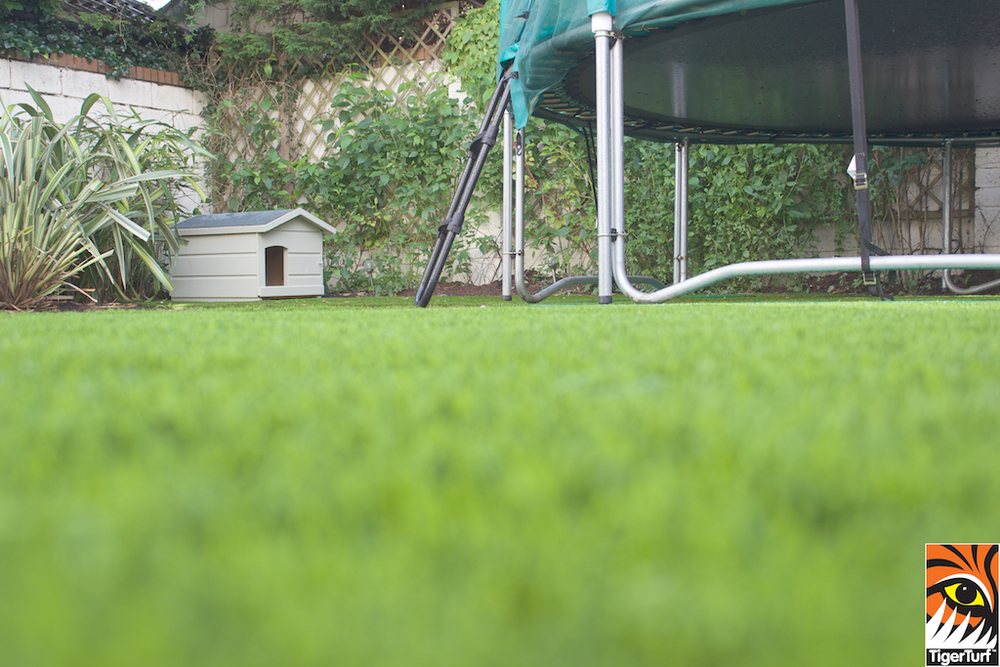 close up of TigerTurf and Trampoline
