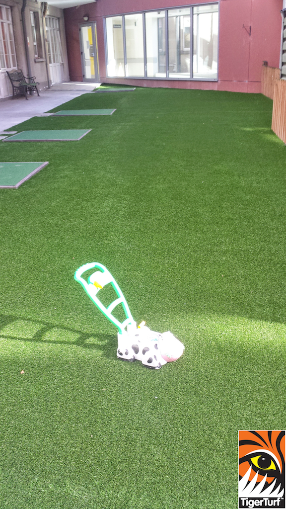 Childs Toy on new Vision Plus Lawn