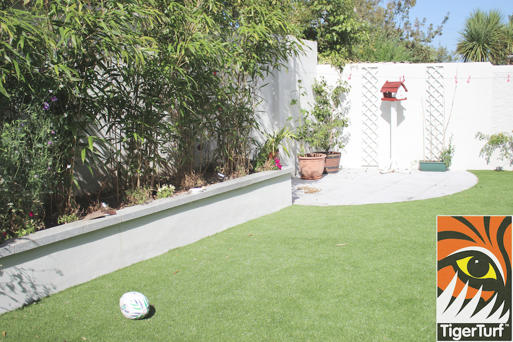 bamboo and TigerTurf artificial Lawn
