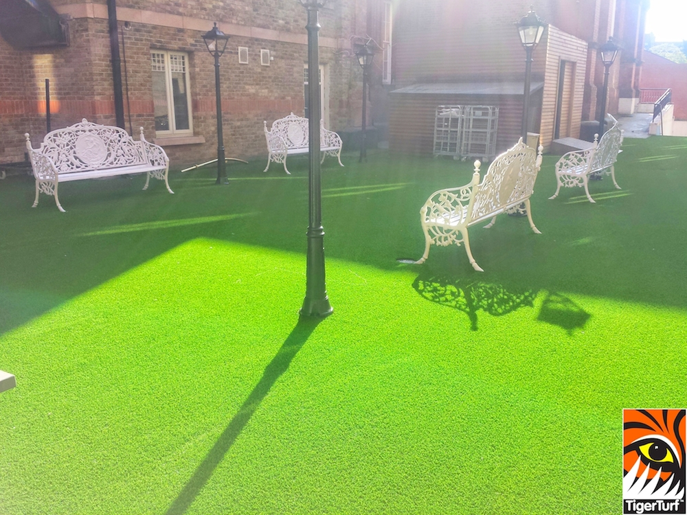 TigerTurf Vision Plus Lawn in Green