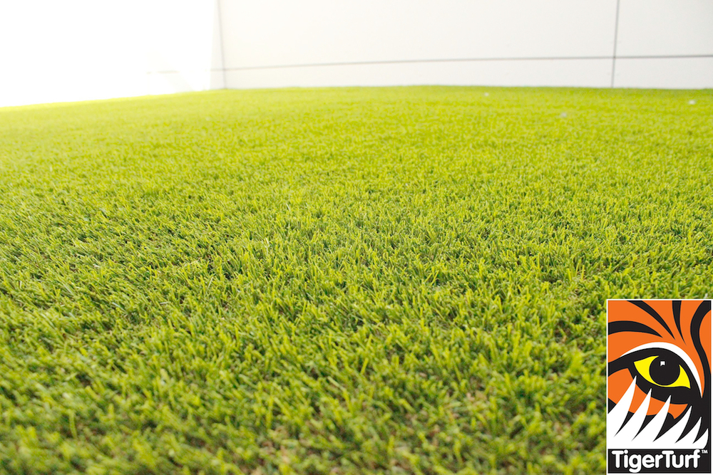 synthetic grass in family garden 1.jpg