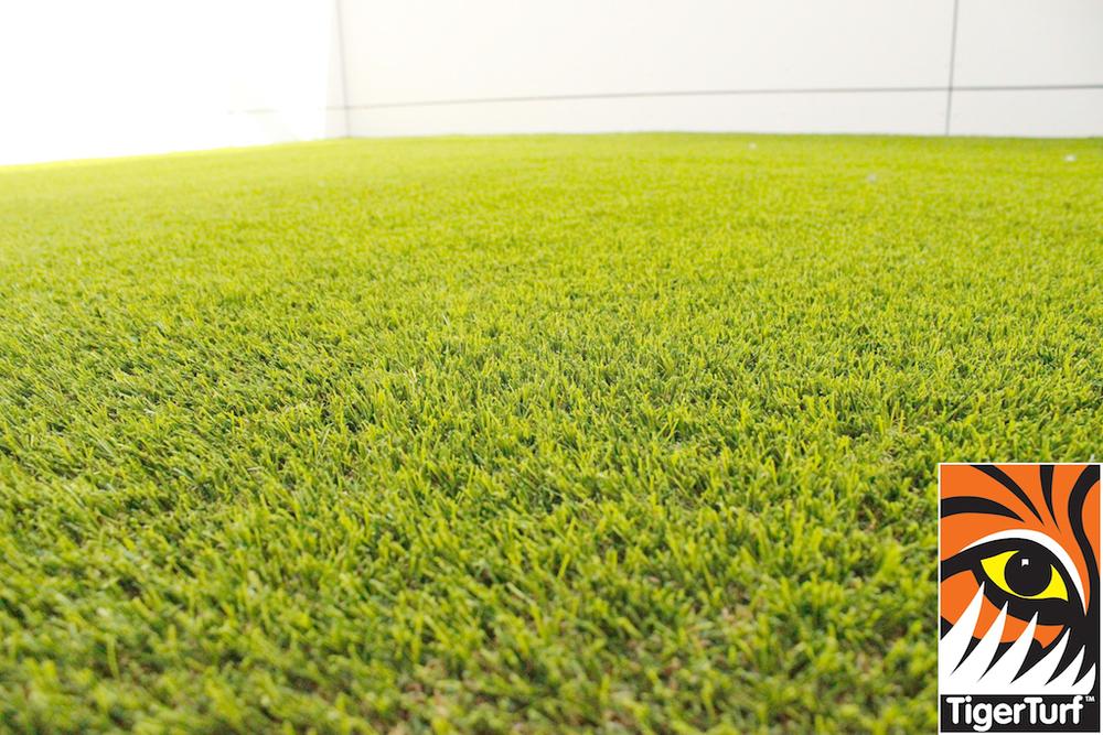 synthetic grass in family garden 1.jpg