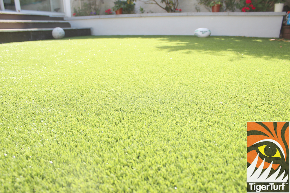 TigerTurf lawn Close up