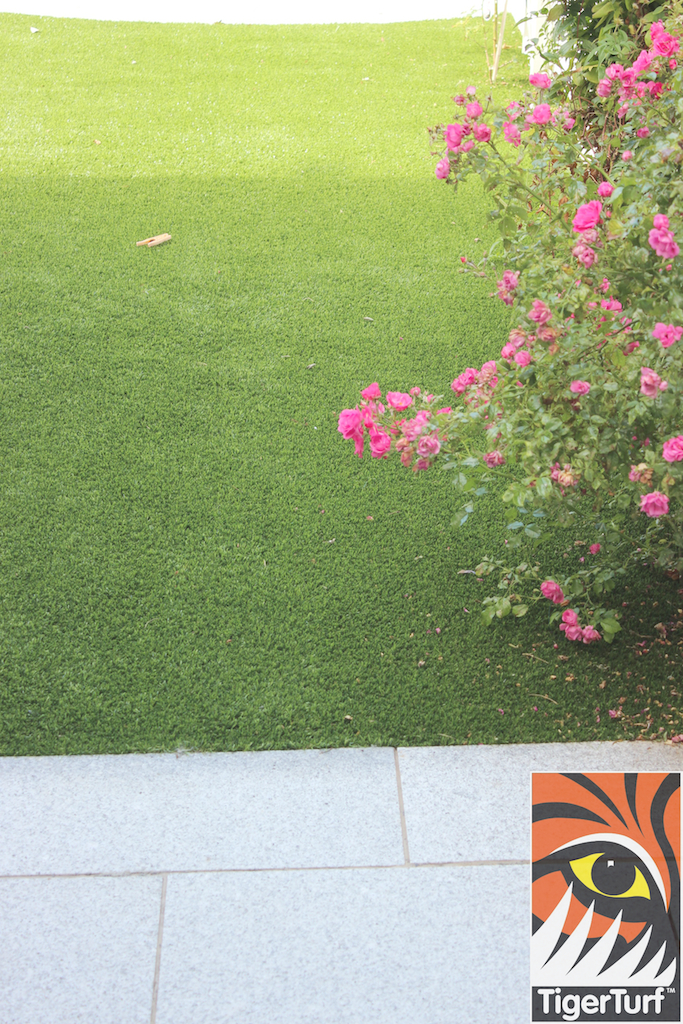 silver granite paving and grass
