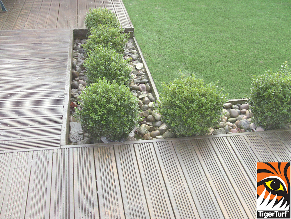 decking and buxus