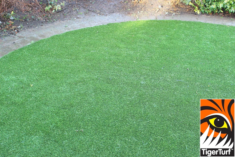synthetic grass in family garden 50.jpg