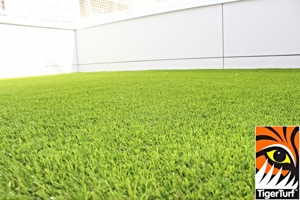 TigerTurf Finesse Deluxe for Crumlin Roof Garden