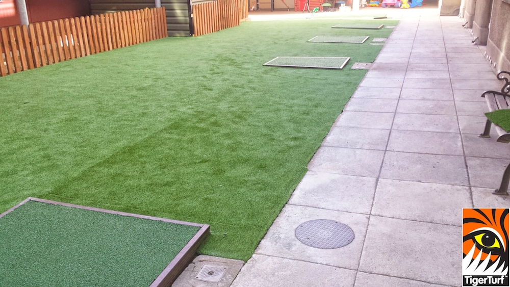 TigerTurf Vision Plus in Green