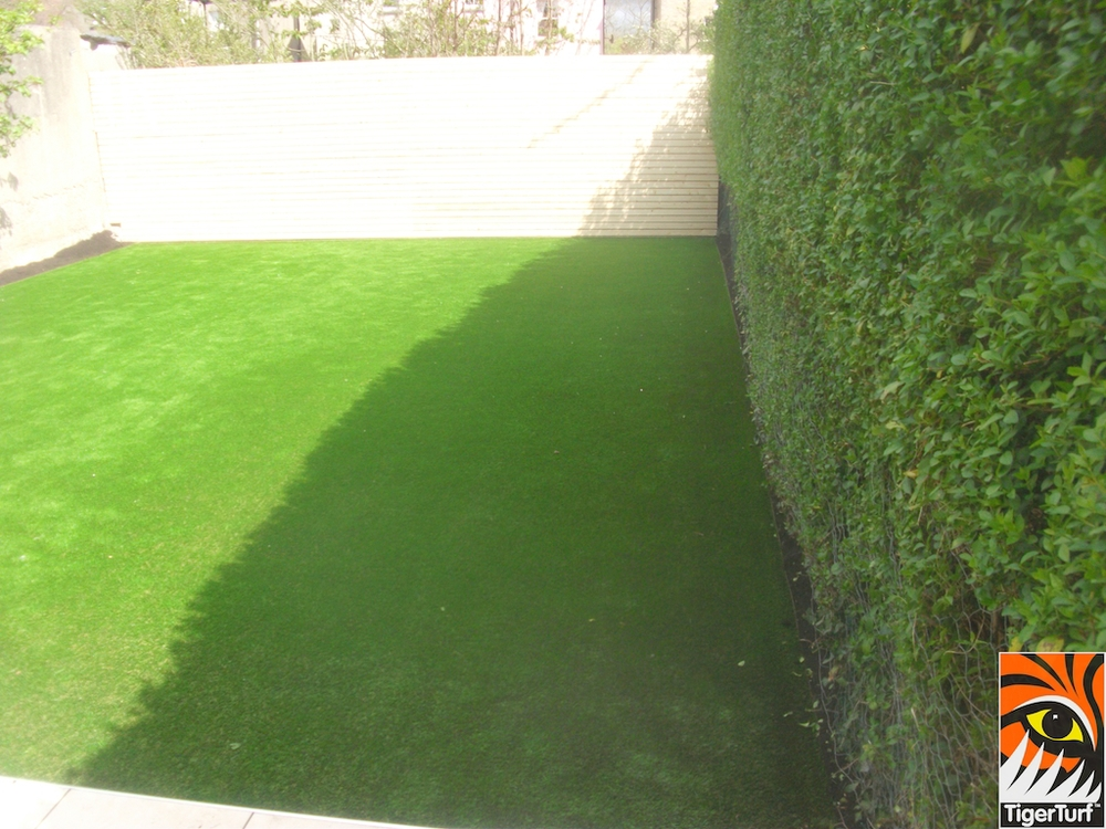 Hedge and TigerTurf Finesse Lawn