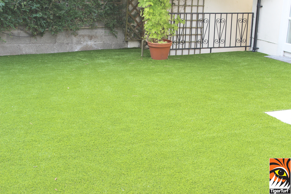 TigerTurf grass lawn