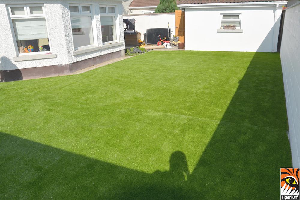 Irish garden Lawn