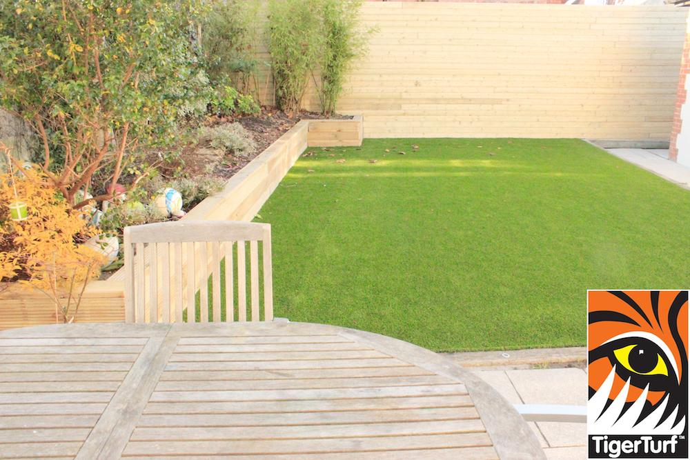 Lawn Turf Grass