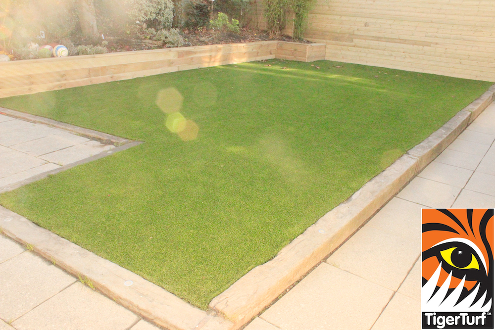 Lawn Turf in the sun