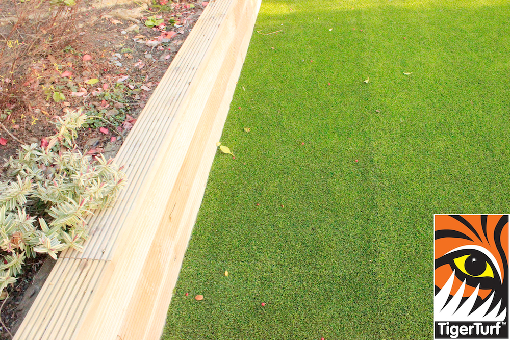 Edge of Artificial Lawn Turf