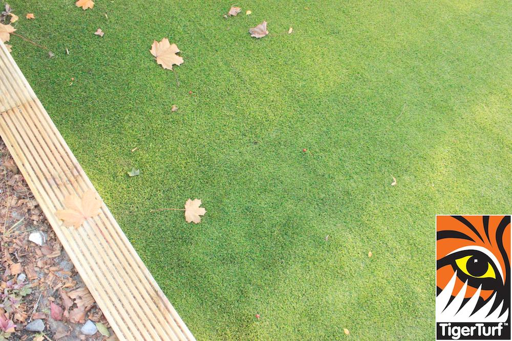 Garden lawn installation