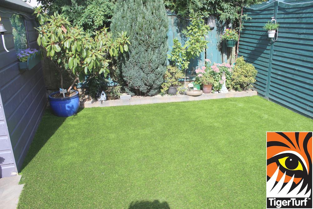 Lawn Turf Garden