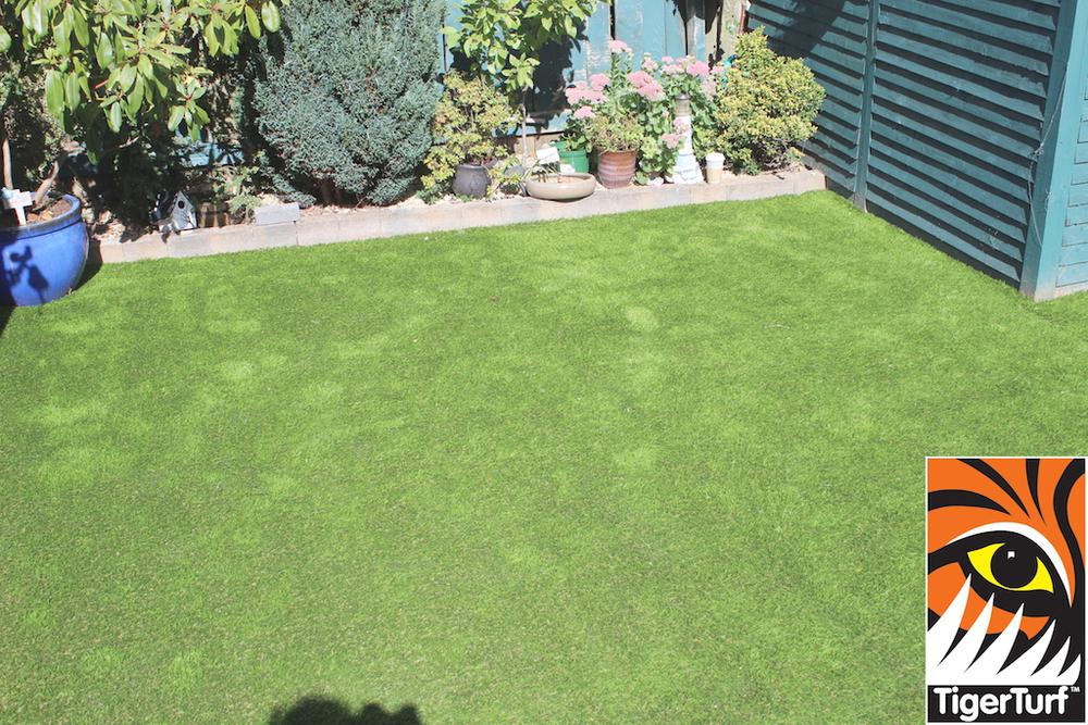 TigerTurf lawn in South Dublin back Garden