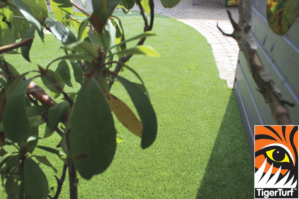 artificial Grass from behind the trees