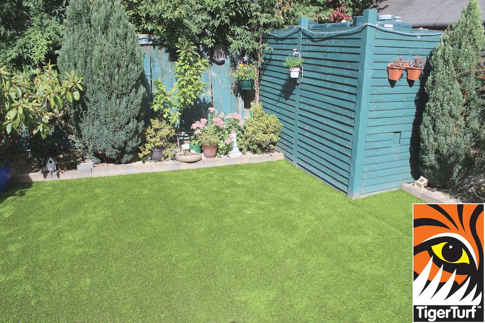 TigerTurf finesse grass