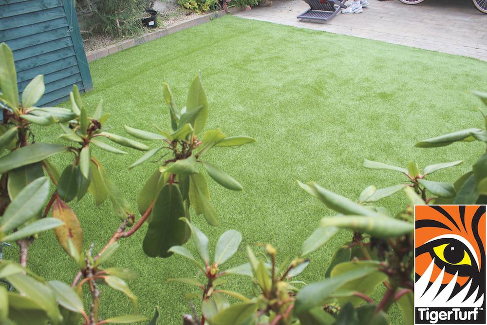 TigerTurf Green Lawn