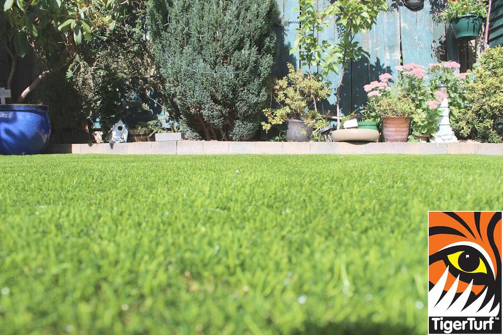 TigerTurf Lawn Grass