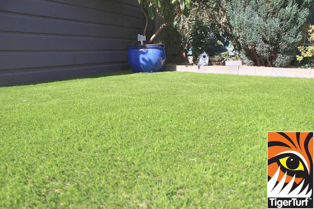 synthetic grass in family garden 49.jpg