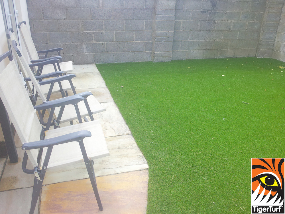 Synthetic Garden Lawn