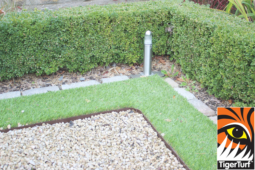 corner of Driveway grass