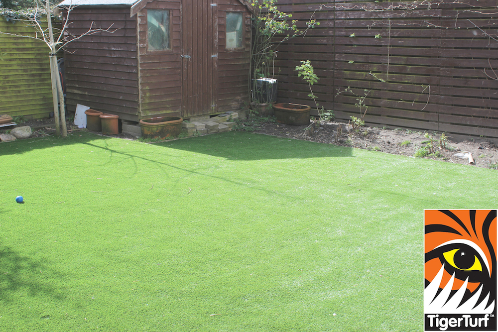 synthetic grass in family garden 20.jpg