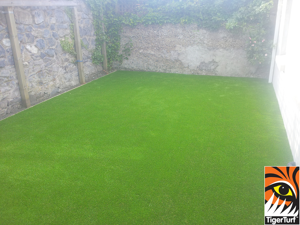 new green astro grass