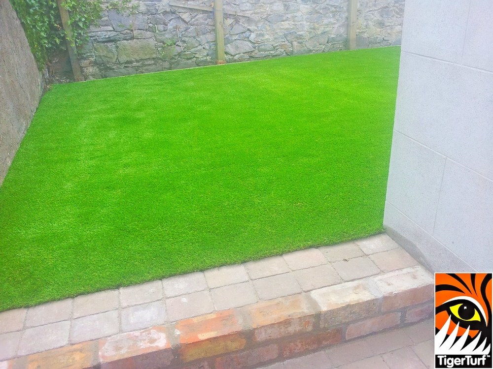 synthetic grass in family garden 9 (1).jpg