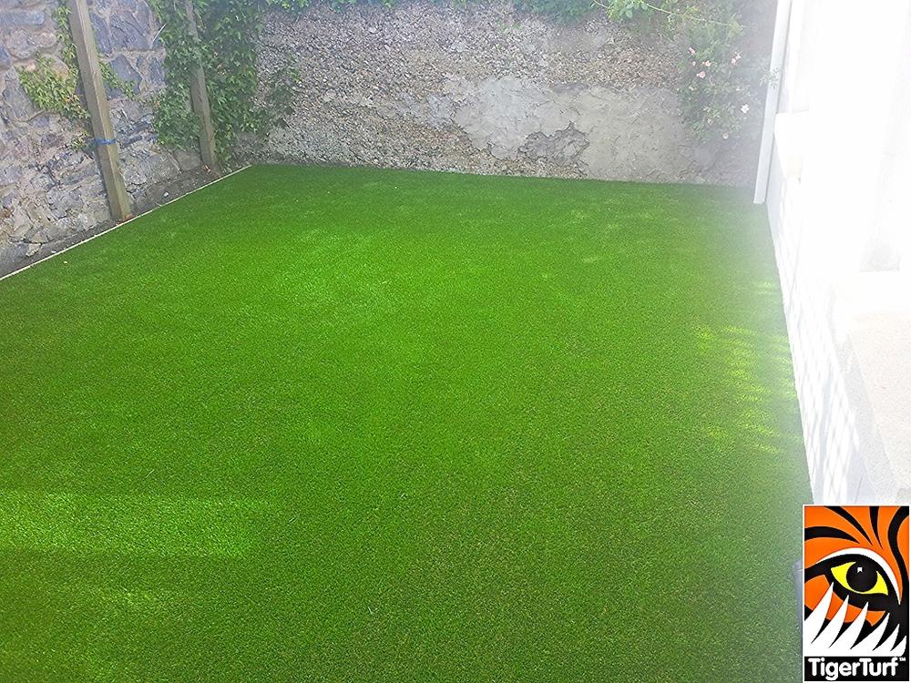 Astro Turf Grass