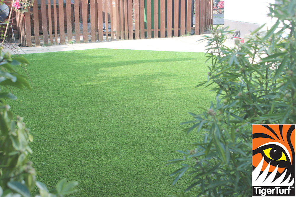 synthetic grass in family garden 26.jpg