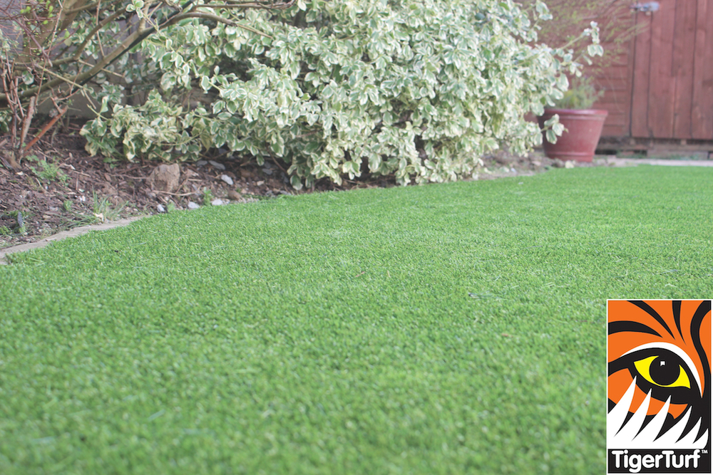 synthetic grass in family garden 41.jpg