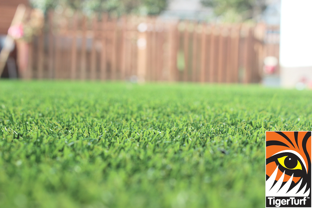 synthetic grass in family garden 54.jpg