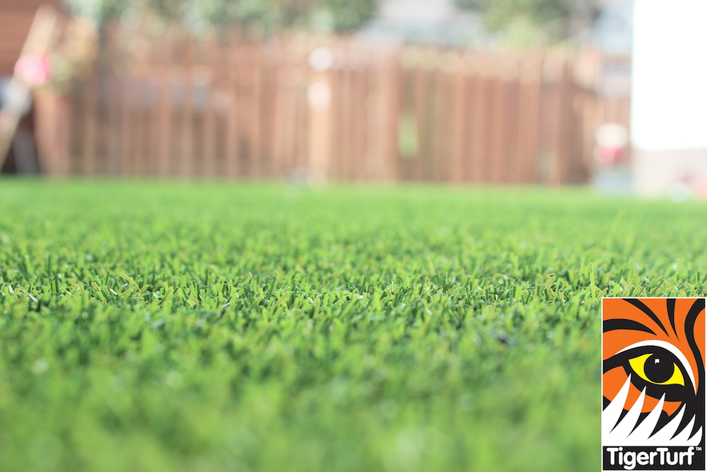 synthetic grass in family garden 58.jpg