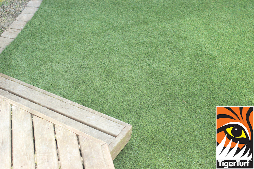 synthetic grass in family garden 67.jpg