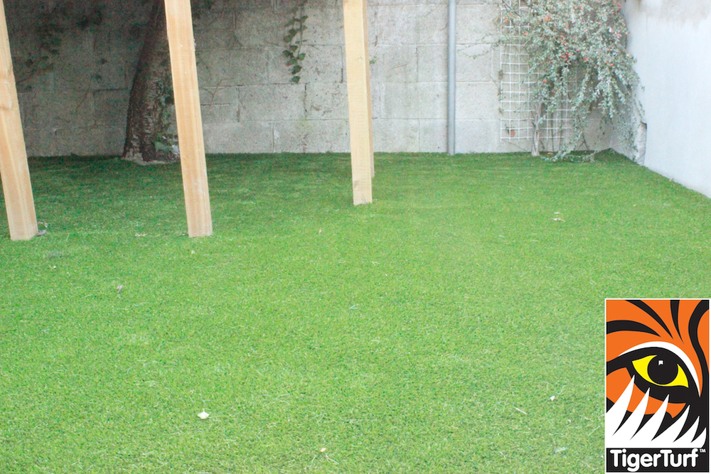 green synthetic grass