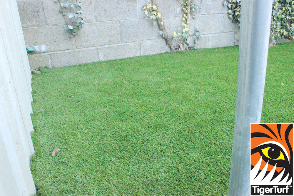 synthetic grass in family garden 45.jpg