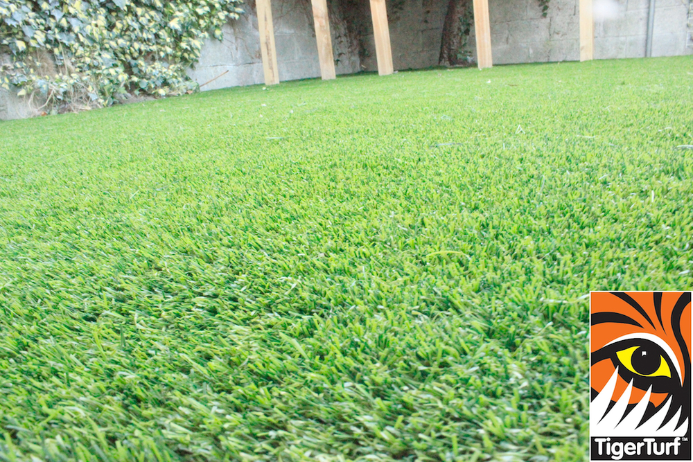 synthetic grass in family garden 9.jpg