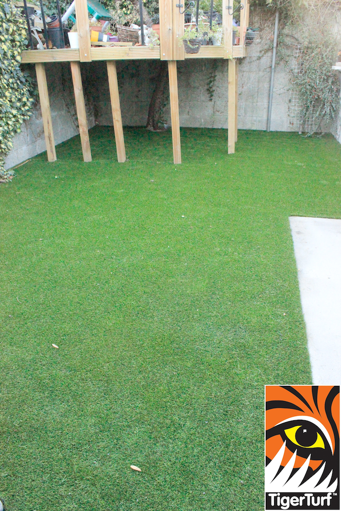 synthetic grass in family garden 38.jpg