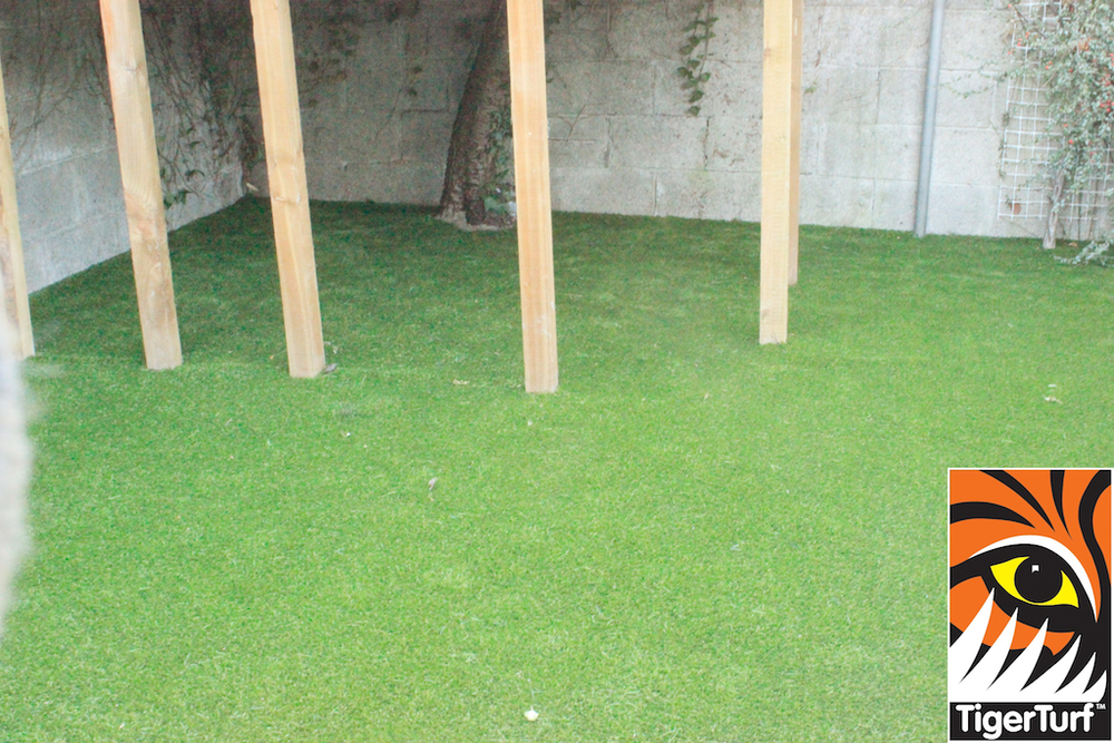 synthetic grass in family garden 8.jpg