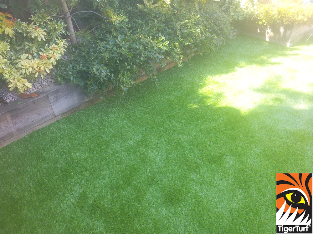 synthetic grass in family garden 1 (1).jpg