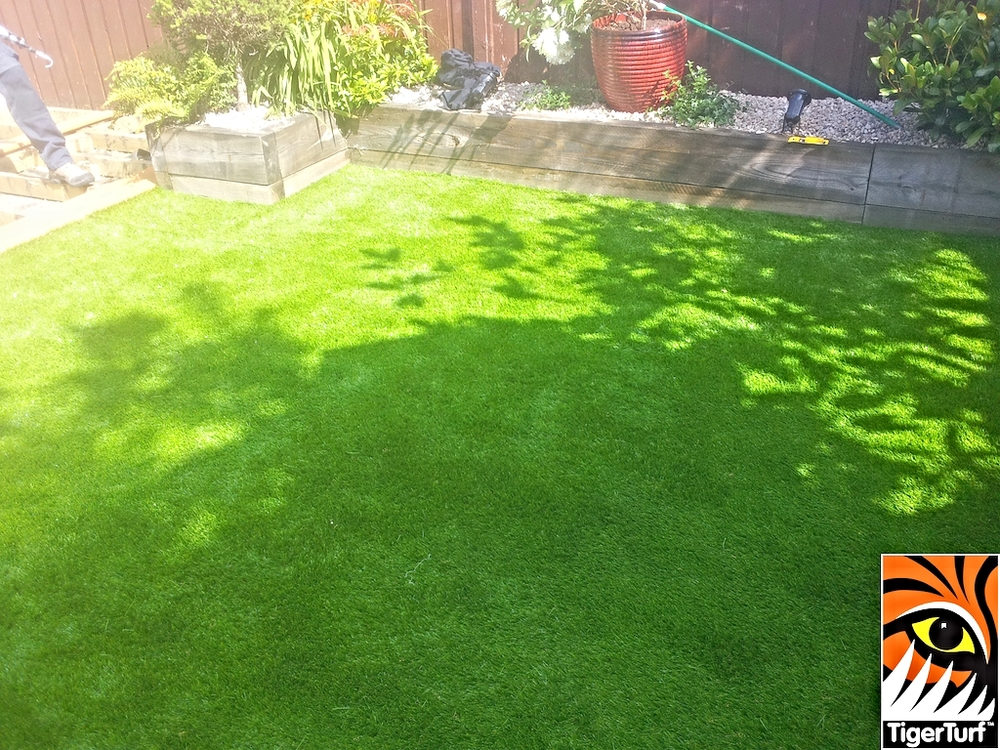 synthetic grass in family garden 2.jpg
