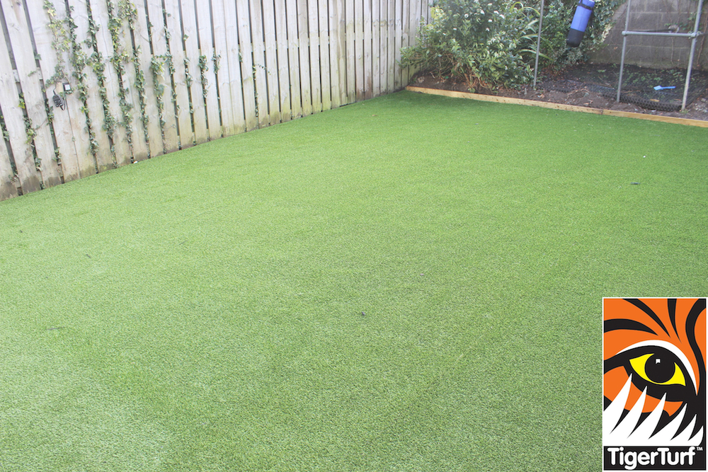 synthetic grass in family garden 43.jpg