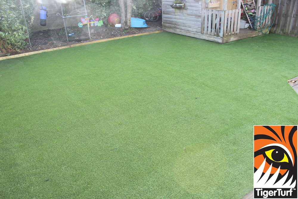synthetic grass in family garden 60.jpg