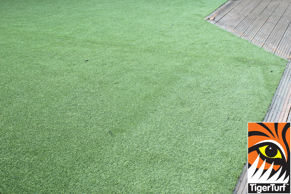 synthetic grass in family garden 83.jpg