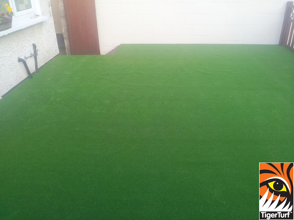 synthetic grass in family garden 7 (1).jpg