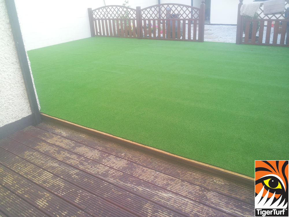 synthetic grass in family garden 4.jpg